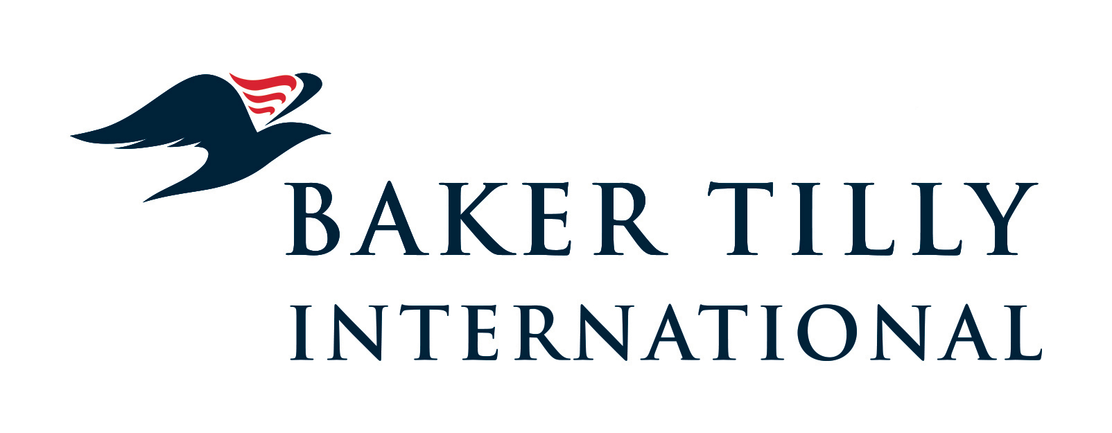 baker tilly iinternational